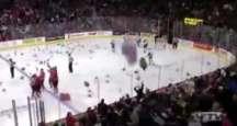 Buz hokeyi maçında oyuncak ayı