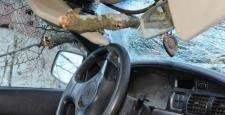 Seyir halindeki kamyonetin üzerine ağaç devrildi